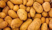 Kartoffeln Schälen Oder Nicht Verbraucherzentrale Bayern